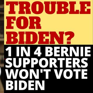 1 IN 4 BERNIE SUPPORTERS WON'T VOTE FOR BIDEN