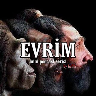 Halilenin MP | Evrim #1 İnsanın Bedensel Yapısı