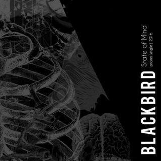 Blackbird - State of Mind
