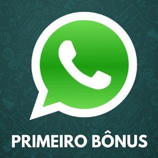 1° Bônus Do Nosso Aulão (Estratégias Para O WhatsApp)