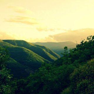 Borgo Campello - 7 agosto
