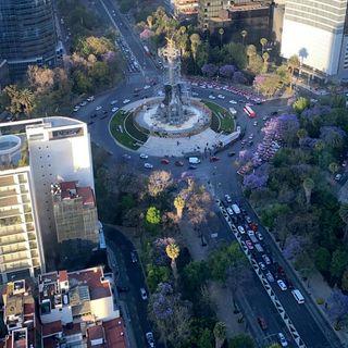 Cerrado Reforma y calles aledañas, debido a carrera