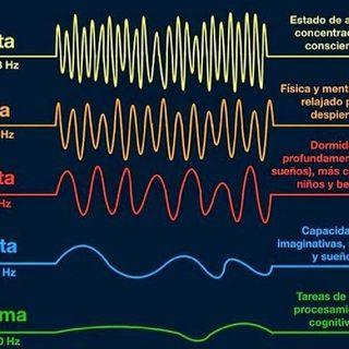 Qué tipo de ondas cerebrales produces?