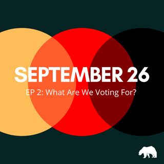 EP 2: What Are We Voting For?