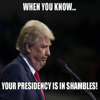 Trump's Presidency is going south Bigly!