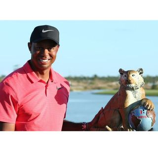 Tiger's Time to Shine