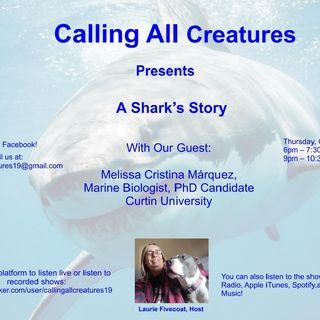 A Shark's Story
