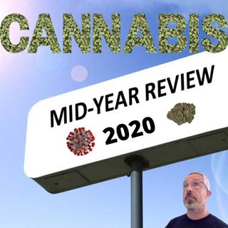 Mid-Year 2020 US Cannabis Market Review