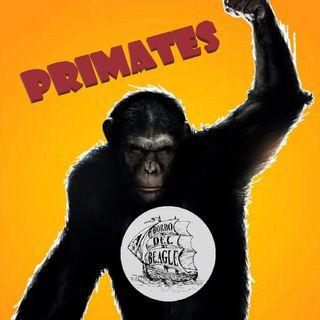 """T1E02 Chimpancés, bonobos y """"El Origen del Planeta de los Simios"""" con Raúl Cabrera de SOS Primates."""
