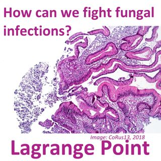 Episode 287 - Fighting back against fungal infections
