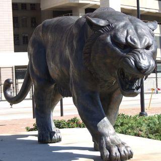 MSJ Callin Baton Rouge - Sam's Not So Legal LSU Exploits