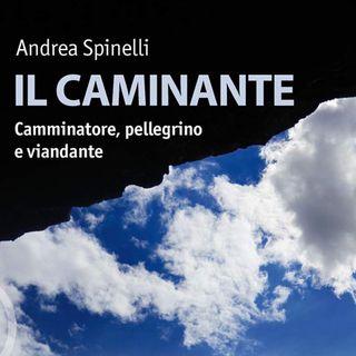 """Andrea Spinelli """"Il caminante"""""""