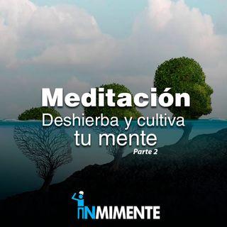 Meditación Deshierba y Cultiva tu Mente - Parte 2