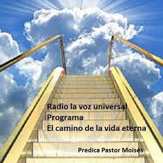 Radio la voz universal- CONCEPCION  16 junio  2019