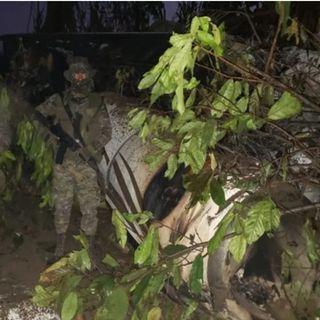 Aeronave robada en Morelos se estrella en Guatemala
