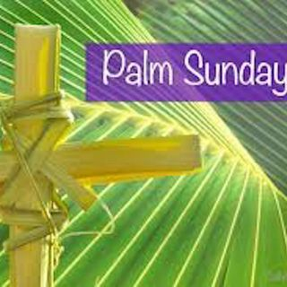 EP. 18-Palm Sunday Mass