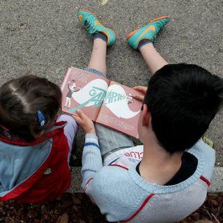 Libros difíciles o desafiantes: ¿Cómo acompañar su lectura?