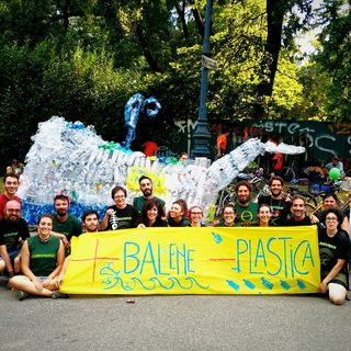 Il volontariato con il Gruppo Locale Greenpeace di Torino