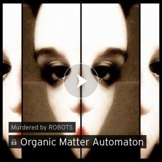 MbR 39: Organic Matter Automaton