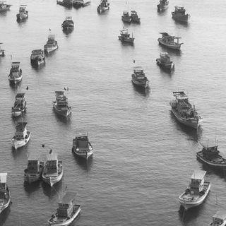 #20 good morning vietnam / yasar eser