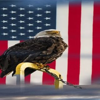 What Will America Do Without Freedom? II