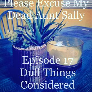Episode 17 - Dull Things Considered