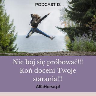 Podcast 12: Nie bój się próbować w pracy z koniem