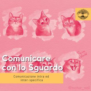 Comunicare con lo Sguardo #1 (Rubrica Etologica) - Impronta Animale