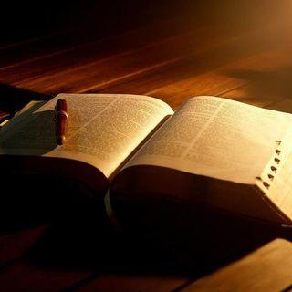 1. La experiencia gozosa de la Lectio Divina