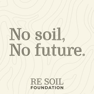 Le news di Re Soil Foundation