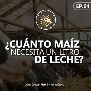 EP 04: ¿Cuánto maíz necesita un litro de leche?