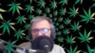 ProCannabisMedia Cannabis Chat Live September 10, 2020