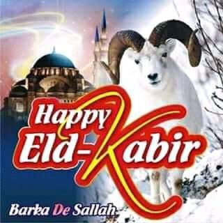 Yolo Show - Special Eid-kabir Edition
