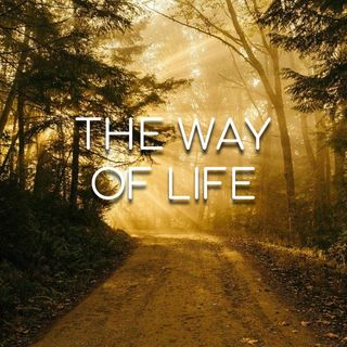 The Way of Life - Morning Manna #2950