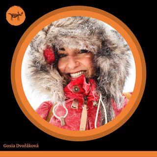 #002 O friluftsliv i zdrowiu z Gazela w Laponii