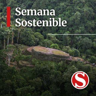 ¿Hasta dónde debemos estar dispuestos a ir por la conservación de nuestra biodiversidad?