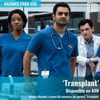 Razones para ver | 'Transplant'