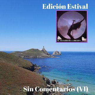 SIN COMENTARIOS VI - (2020)
