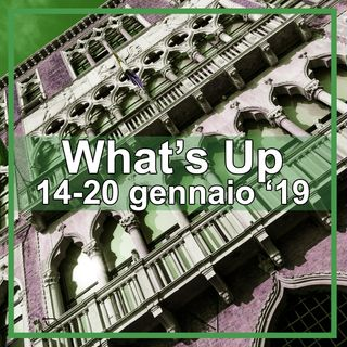 What's Up: 14-20 gennaio 2019