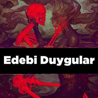 Edebi Duygular - 1.Bölüm