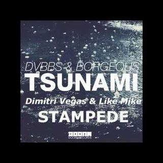 TSUNAMI STAMPEDE