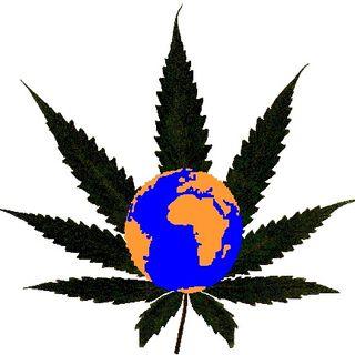 Drug Tuth Network - 03/14/17