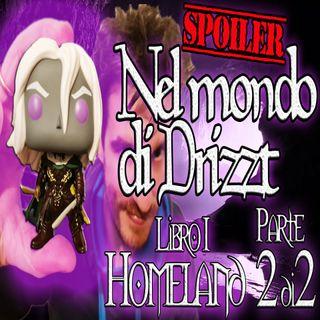 Nel mondo di Drizzt - Riassunto 1° libro della saga - Homeland Parte 2 di 2
