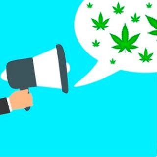 La legalizzazione messicana per rompere il binomio cannabis-narcos
