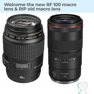 Canon RF 100mm 2.8L Macro IS USM lens for dental photography