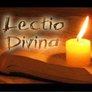 LECTIO XXVII DOMENICA DEL TEMPO ORDINARIO - ANNO A