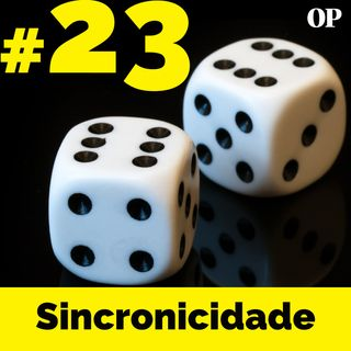 """#23 - Sincronicidade: """"Só sei que foi assim"""""""