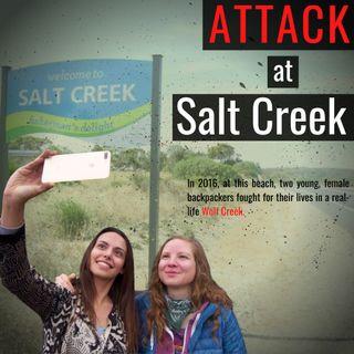The Attack at Salt Creek