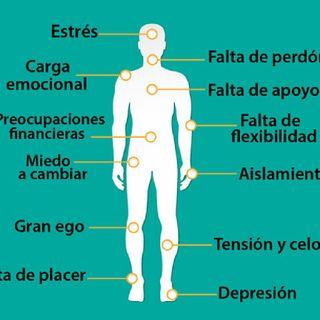 Como Son Mis clases Cursos Y Terapias- Guillermo Guzmán |El Humanauta