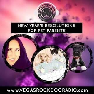 Pet Parent Resolutions To Improve Your Pet's Health And Wellness